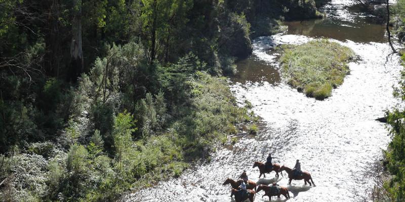 watson's mountain rides54