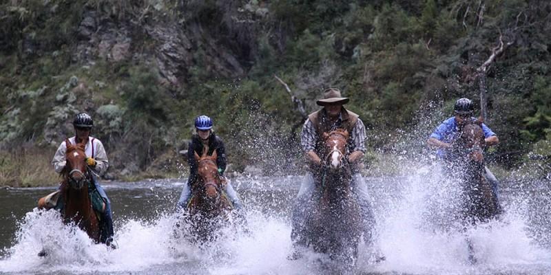 watson's mountain rides94